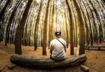 Hayatinizin Amacini Belirlemeden once Kendinize Sormaniz Gereken 3 Soru